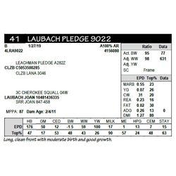 LAUBACH PLEDGE 9022