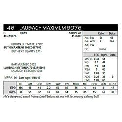 LAUBACH MAXIMUM 9076
