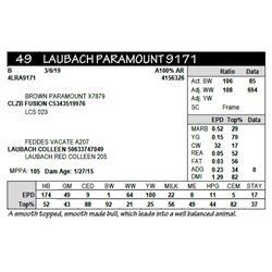 LAUBACH FUSION 9171