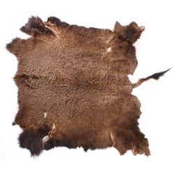 Montana Wild Buffalo Trophy Fur Hide Rug