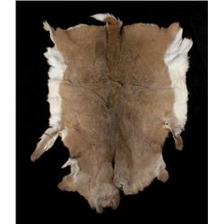 Montana Whitetail Tanned Deer Hide