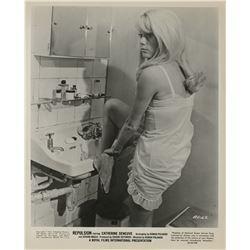 Ladies in Lingerie (18) revealing photographs.