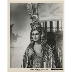 Elizabeth Taylor (8) photographs.