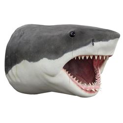 'Bruce' the great white shark from Jaws figure created from the original plans for Universal.
