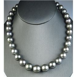 19CAI-6 TAHITIAN SOUTH SEA PEARLS