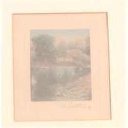"""19KI-23 """"TREE LAKE REFLECTION"""""""