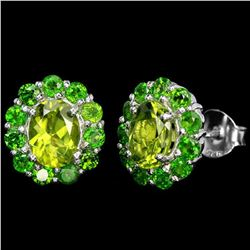 Natural Green Peridot & Chrome Diopside EARRINGS
