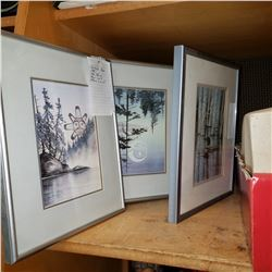 SUE COLEMAN NATIVE PRINTS IN FRAME