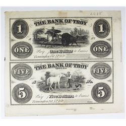1858 RARE UNLISTED SHEET $1 AND $5