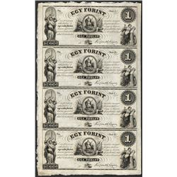 Uncut Sheet of 1800's $1 Ket Forint Obsolete Notes