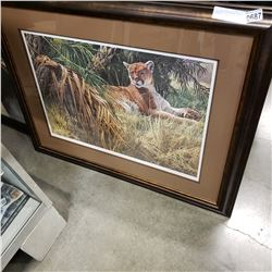 LEP LION IN THE WEEDS SEEREY LESTER 87 3FT BY 4FT PRINT