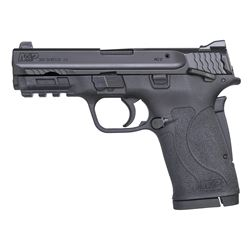 Smith & Wesson, M&P380 SHIELD EZ M2.0 NEW IN BOX, .380ACP, 11663