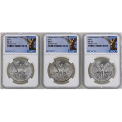 Lot of (3) 1983Mo Mexico Libertad Onza Silver Coins NGC MS65