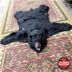 """Bear Rug (Claws on Front) Arm Span 68"""""""