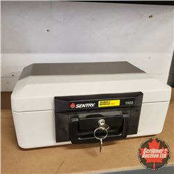 Sentry Model 1100 Lock Box