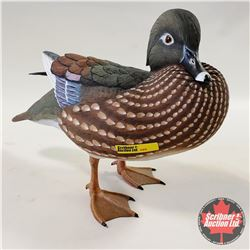The Hadley Collection: Woodduck Hen