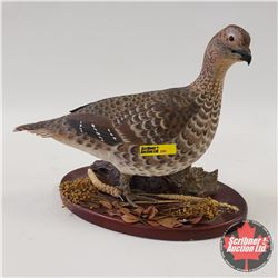 Ducks Unlimited: Grouse