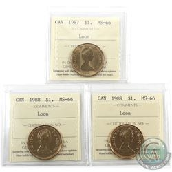Loon $1 1987, 1988 & 1989 ICCS Certified MS-66. 3pcs