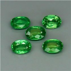 Natural Top Green Tsavorite Garnet Tanzania 5Pcs/2.25Ct