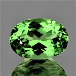 Natural Green Tsavorite Garnet 6.5x5 MM {Flawless-VVS}