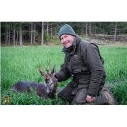 SIX DAY ROE DEER HUNT IN SERBIA FOR 2 HUNTERS