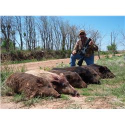 ALL THE TEXAS HOGS YOU CAN SHOOT FOR THREE HUNTERS