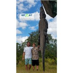 TWO PERSON/TWO ALLIGATOR FLORIDA HUNT