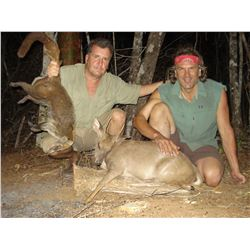 A SEVEN DAY MEXICAN CAMPECHE JUNGLE HUNT FOR TWO HUNTERS