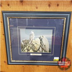 "Framed Print - Robert Bateman ""White GyrFalcon"" (17"" x 20"")"