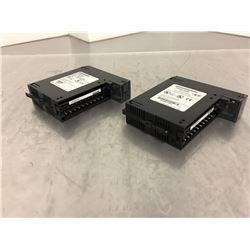 (2) GE Fanuc IC693ALG442B Input/Output Analog Module