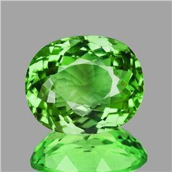 Natural Green Tsavorite Garnet Natural {VVS}