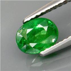 Natural Green Tsavorite Garnet Tanzania 1.01 Ct