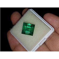 Natural Princess Cut Forest Green Emerald 7.90 Cts