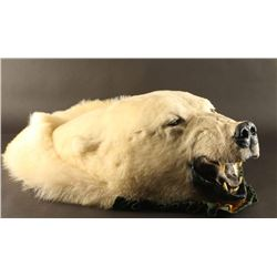 Polar Bear Head Mount