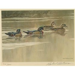 Duck Stamp Print