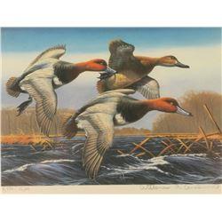 Duck Stamp Print