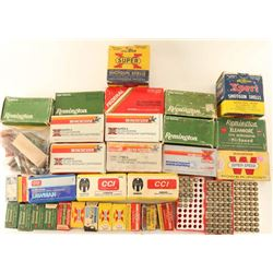 Big Lot of Ammo & More