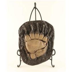 Cast Grizzly Bear Paw