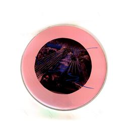 Signed Steely Dan - Pink Drumhead
