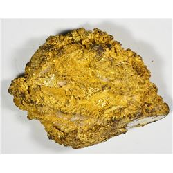 Large Gold Nugget. Unknown Source. Another Round Mountain Mine nugget. 60.0 Grams.