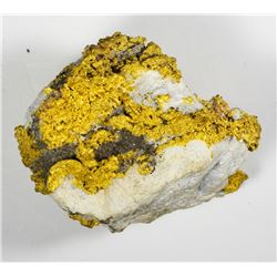 California. Gold Nugget. Crystalline Gold Specimen found in Nevada City, California.