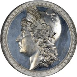 1892 World's Columbian Exposition. Liberty Head, Columbus's Landing Medal. E-101. Aluminum. MS-63.