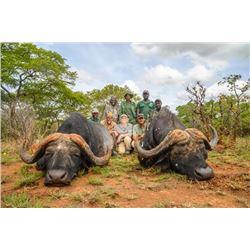 Adam Clements Moyowosi Game Reserve Safari