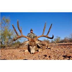 El Chapparral Mexico Mule Deer