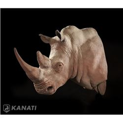 Rhino Replica Shoulder Mount