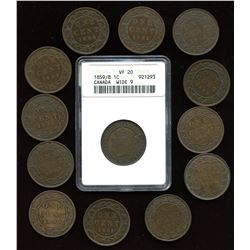 Victorian Large Cents - Lot of 13