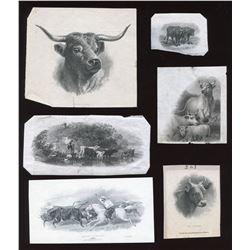 Die Proof Vignettes:Cattle.