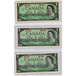 Canada $1 Banknote Collection