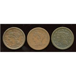 Lot of three US large cents
