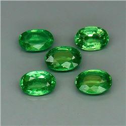 Natural Top Green Tsavorite Garnet Tanzania 5Pcs/2.25Ct